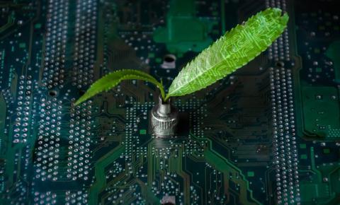 Saiba o que é e como aplicar o conceito de TI Verde